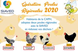 Opération poules 2020
