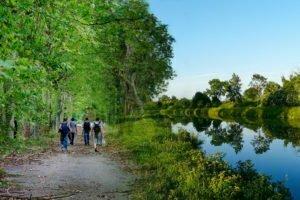 Promenades en forêt et le long des cours d'eau