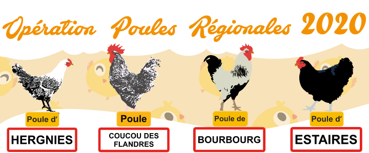 Op-poules-SIAVED_720x300